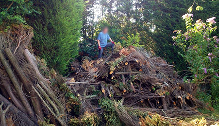 garden-waste-removal-before