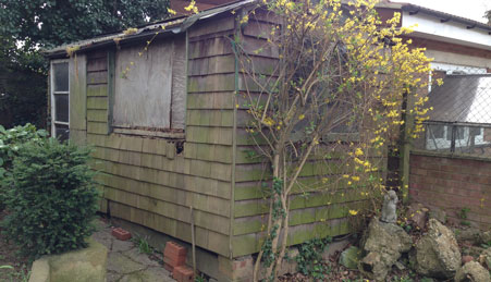 shed-removal-before